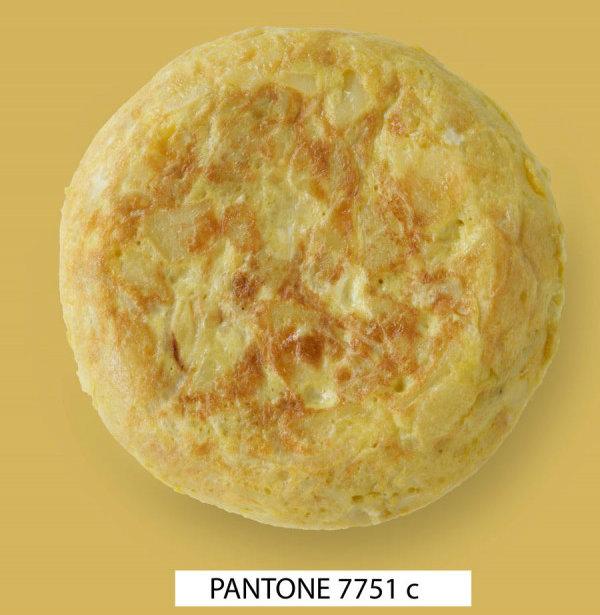 PANT11