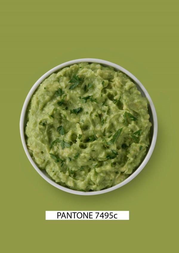 pantone-food-guacamole_gastromedia-600x848