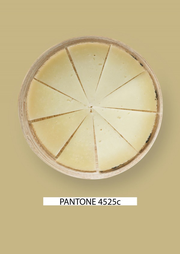 Pantone-food-queso-1-gastromedia-600x848
